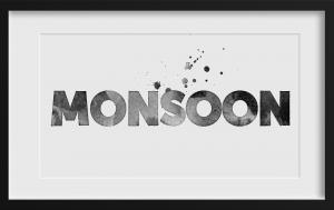 Monsoon hall of shame