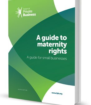 Maternity Rights Guide