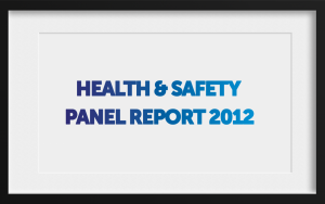 H&S Panel Report